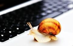 ΝΕΑ ΕΙΔΗΣΕΙΣ (Έχετε αργή σύνδεση στο Internet; Δοκιμάστε αυτό το κόλπο και θα γίνει πολύ ταχύτερη!)