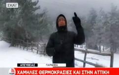 ΝΕΑ ΕΙΔΗΣΕΙΣ (Δημοσιογράφος περιγράφει το χιονισμένο τοπίο και η ελληνική γλώσσα… υποφέρει! (ΒΙΝΤΕΟ))