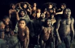 ΝΕΑ ΕΙΔΗΣΕΙΣ (Πότε μπήκε στο DNA μας ο Νεάντερταλ)