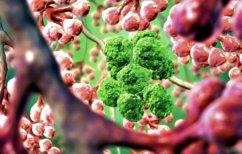 ΝΕΑ ΕΙΔΗΣΕΙΣ (Η νανοϊατρική στη μάχη κατά του καρκίνου)