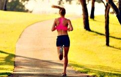 ΝΕΑ ΕΙΔΗΣΕΙΣ (ΕΡΕΥΝΑ: Το τρέξιμο βελτιώνει τη μνήμη)