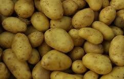 ΝΕΑ ΕΙΔΗΣΕΙΣ (Γρίφος: Πόσο ζυγίζουν οι πατάτες; (ΒΙΝΤΕΟ))