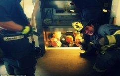 ΝΕΑ ΕΙΔΗΣΕΙΣ (Πυροσβέστες τρολάρουν αστυνομικούς που εγκλωβίστηκαν σε ασανσέρ (ΒΙΝΤΕΟ))