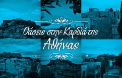 ΝΕΑ ΕΙΔΗΣΕΙΣ (100 ταράτσες της Αθήνας: κάθε μπαλκόνι έχει άλλη θέα (ΒΙΝΤΕΟ))