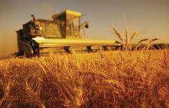 ΝΕΑ ΕΙΔΗΣΕΙΣ (Έχουμε ηθική υποχρέωση απέναντι στους αγρότες μας!)