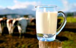 """ΝΕΑ ΕΙΔΗΣΕΙΣ (Υπάρχει """"φρέσκο"""" γάλα 100 ημερών; Κι όμως…)"""