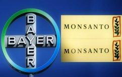 ΝΕΑ ΕΙΔΗΣΕΙΣ (Bayer-Monsanto: Ένας εντυπωσιακός γάμος που… τρομάζει)