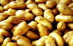 ΝΕΑ ΕΙΔΗΣΕΙΣ (Τι κινδύνους κρύβει η μεγάλη κατανάλωση πατάτας)