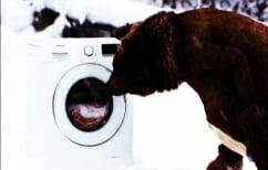 ΝΕΑ ΕΙΔΗΣΕΙΣ (Οι πατέντες των ξενοδόχων συνεχίζονται – Δείτε πού έβαλε το πλυντήριο!)