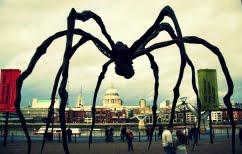 ΝΕΑ ΕΙΔΗΣΕΙΣ (Η αντίδραση μιας παρουσιάστριας δελτίου καιρού μπροστά σε μια γιγαντιαία αράχνη (ΒΙΝΤΕΟ))