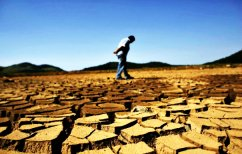 ΝΕΑ ΕΙΔΗΣΕΙΣ (To εξάμηνο Ιανουαρίου-Ιουνίου το θερμότερο που έχει καταγραφεί ποτέ)
