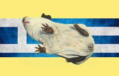 ΝΕΑ ΕΙΔΗΣΕΙΣ (Ελλάδα: Από πειραματόζωο, πολιτικό εργαστήριο…)