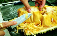 ΝΕΑ ΕΙΔΗΣΕΙΣ (Το παράξενο φρούτο που λένε ότι θα λύσει το πρόβλημα της παγκόσμιας πείνας (ΦΩΤΟ))