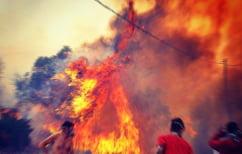 ΝΕΑ ΕΙΔΗΣΕΙΣ (Χίος: μεγάλη φωτιά μαίνεται ανεξέλεγκτη σε δασική έκταση)