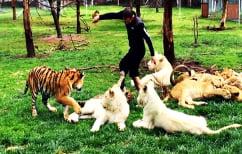 ΝΕΑ ΕΙΔΗΣΕΙΣ (Απίστευτο BINTEO: Τίγρης σώζει άνδρα από επίθεση λεοπάρδαλης)