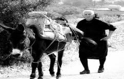 ΝΕΑ ΕΙΔΗΣΕΙΣ (ΔΝΤ: Πώς η γήρανση του εργατικού δυναμικού απειλεί Ελλάδα και Ευρωζώνη (ΠΙΝΑΚΕΣ))