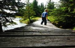 ΝΕΑ ΕΙΔΗΣΕΙΣ (Σοκαριστικό ΒΙΝΤΕΟ: Άνδρας πετάει 4χρονο αγόρι από γέφυρα)