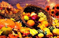 ΝΕΑ ΕΙΔΗΣΕΙΣ (Τα θρεπτικά φρούτα και λαχανικά του φθινοπώρου)