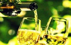 ΝΕΑ ΕΙΔΗΣΕΙΣ (Γιατί το κρασί δεν πρέπει να σερβίρεται ποτέ παγωμένο)