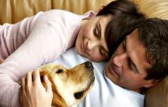 ΝΕΑ ΕΙΔΗΣΕΙΣ (Πέντε λόγοι για να υιοθετήσετε σκύλο)