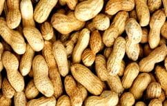 ΝΕΑ ΕΙΔΗΣΕΙΣ (Η πρώιμη διατροφή με φιστίκια σώζει από τις αλλεργίες)