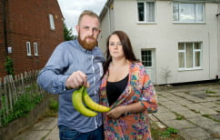 ΝΕΑ ΕΙΔΗΣΕΙΣ (Οι μπανάνες που αγόρασαν έκρυβαν κάτι τόσο τρομακτικό που τους ανάγκασε να εγκαταλείψουν το σπίτι τους (ΦΩΤΟ))
