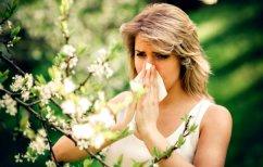 ΝΕΑ ΕΙΔΗΣΕΙΣ (Φθινοπωρινές αλλεργίες: Τι να αποφύγουμε)