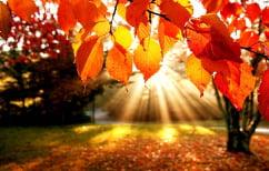 ΝΕΑ ΕΙΔΗΣΕΙΣ (Σήμερα ξεκινά κι επισήμως το Φθινόπωρο)