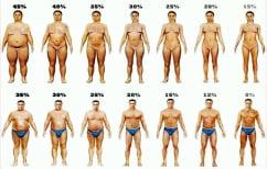 ΝΕΑ ΕΙΔΗΣΕΙΣ (Δείτε το φυσιολογικό ποσοστό σωματικού λίπους ανάλογα με την ηλικία σας (ΠΙΝΑΚΑΣ))