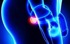 ΝΕΑ ΕΙΔΗΣΕΙΣ (Εβδομάδα προληπτικού ελέγχου για τον καρκίνο του προστάτη στο «Ερρίκος Ντυνάν»)