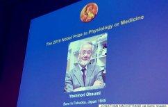 ΝΕΑ ΕΙΔΗΣΕΙΣ (O Ιάπωνας Γιοσινόρι Οσούμι πήρε το φετινό Νόμπελ Ιατρικής)