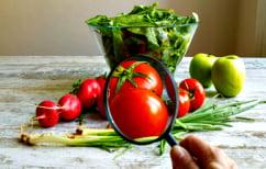 ΝΕΑ ΕΙΔΗΣΕΙΣ (Αυτοί είναι οι «ντετέκτιβ τροφίμων» που κρατούν ασφαλές το φαγητό στο πιάτο μας (ΒΙΝΤΕΟ))