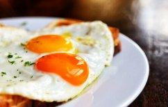 ΝΕΑ ΕΙΔΗΣΕΙΣ (Ποιος είναι ο πιο υγιεινός τρόπος να τρώτε τα αυγά, σύμφωνα με την επιστήμη)