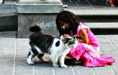 ΝΕΑ ΕΙΔΗΣΕΙΣ (Ξεκαρδιστικό βίντεο που έγινε viral: Γάτα έβαλε τρικλοποδιά σε… κοριτσάκι)