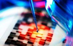 ΝΕΑ ΕΙΔΗΣΕΙΣ (Έφτιαξαν μίνι ανθρώπινα έντερα στο εργαστήριο)