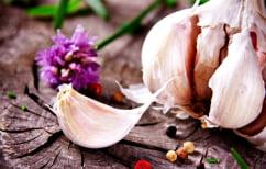 ΝΕΑ ΕΙΔΗΣΕΙΣ (Τα τέσσερα μυστικά του σκόρδου που δεν γνωρίζετε)
