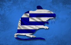 ΝΕΑ ΕΙΔΗΣΕΙΣ (Τα ποντίκια της Ελλάδας κατάντησαν αδέξια ζόμπι…)