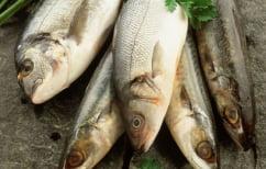 ΝΕΑ ΕΙΔΗΣΕΙΣ (Το ψάρι «σύμμαχος» στην ρευματοειδή αρθρίτιδα)