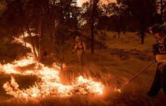 ΝΕΑ ΕΙΔΗΣΕΙΣ (Μεγάλη φωτιά στην Καλιφόρνια – Εκκενώθηκε πόλη κοντά στο Γιοσέμιτι)