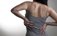 ΝΕΑ ΕΙΔΗΣΕΙΣ (Έρευνα: Εάν κάνεις γυμναστική, μειώνονται οι πόνοι στην μέση)