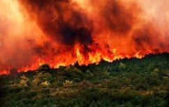 ΝΕΑ ΕΙΔΗΣΕΙΣ (36 πυρκαγιές το τελευταίο 24ωρο-Υπό έλεγχο η φωτιά στον νομό Ηλείας)