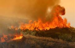ΝΕΑ ΕΙΔΗΣΕΙΣ (Υψηλός ο κίνδυνος εκδήλωσης πυρκαγιάς σε όλη την Ελλάδα)
