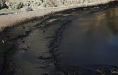 ΝΕΑ ΕΙΔΗΣΕΙΣ (Ξανθός: Κίνδυνος η ρύπανση από την πετρελαιοκηλίδα να περάσει στη διατροφική αλυσίδα)