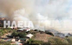 ΝΕΑ ΕΙΔΗΣΕΙΣ (Σε πύρινο κλοιό η Ηλεία-Κινδυνεύουν σπίτια στο χωριό Μάκιστος)