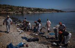 ΝΕΑ ΕΙΔΗΣΕΙΣ (Βελτιωμένη η κατάσταση σε πολλές παράκτιες περιοχές του Σαρωνικού)