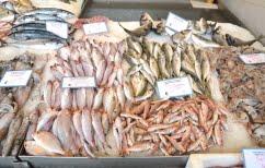 ΝΕΑ ΕΙΔΗΣΕΙΣ (Αποστόλου: Ασφαλή τα αλιεύματα στις ψαραγορές της Αττικής)