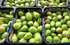 ΝΕΑ ΕΙΔΗΣΕΙΣ (Κατάσχεση 6,9 τόνων ακατάλληλων φρούτων στον Πειραιά)