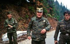 ΝΕΑ ΕΙΔΗΣΕΙΣ (ΝΑΤΟ και ΕΕ καλούν τα Βαλκάνια να εργαστούν για συμφιλίωση μετά την καταδίκη του Μλάντιτς)