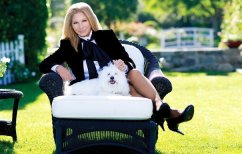 ΝΕΑ ΕΙΔΗΣΕΙΣ (Κι όμως, η Μπάρμπαρα Στρέιζαντ κλωνοποίησε τον σκύλο της)