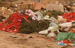 ΝΕΑ ΕΙΔΗΣΕΙΣ (Ισχυρά ελαστικά από υπολείμματα τροφίμων – Μη ρωτάτε πως)